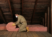 adequate attic insulation tampa bay, fl